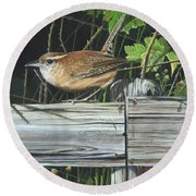 Round Beach Towel featuring the painting Carolina Wren by Mike Brown