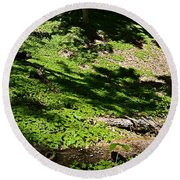Carpeted In Green Round Beach Towel