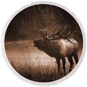 Cataloochee Bull Elk In Sepia Round Beach Towel