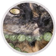 One In A Million... Beauty Of Cat's Eyes. Hello Pearl Collection Round Beach Towel