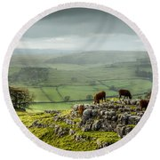 Cattle In The Yorkshire Dales Round Beach Towel