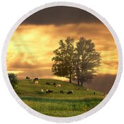 Cattle On A Hill Round Beach Towel