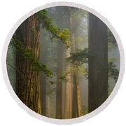 Center Of Forest Round Beach Towel