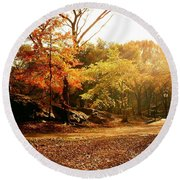 Central Park Autumn Trees In Sunlight Round Beach Towel