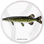 Chain Pickerel Round Beach Towel