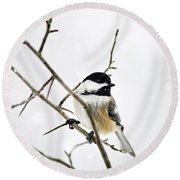Charming Winter Chickadee Round Beach Towel