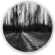 Charred Silence - Yosemite Rm Fire 2013 Round Beach Towel