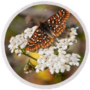 Checkerspot Butterfly On A Yarrow Blossom Round Beach Towel by Jeff Goulden