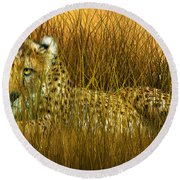 Cheetah - In The Wild Grass Round Beach Towel by Carol Cavalaris