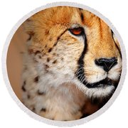 Cheetah Portrait Round Beach Towel by Johan Swanepoel