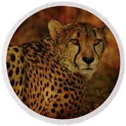 Cheetah Round Beach Towel by Sandy Keeton