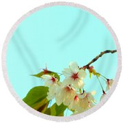 Round Beach Towel featuring the photograph Cherry Blossom Flowers by Rachel Mirror