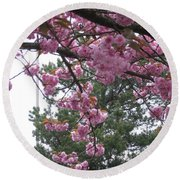 Cherry Blossoms 1 Round Beach Towel