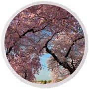 Cherry Blossoms 2013 - 024 Round Beach Towel
