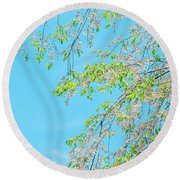 Round Beach Towel featuring the photograph Cherry Blossoms Falling by Rachel Mirror