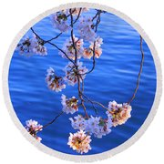 Cherry Blossoms Hanging Over Tidal Basin Round Beach Towel