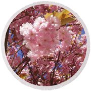 Cherry Trees Blossom Round Beach Towel