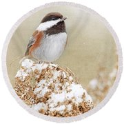 Chickadee And Falling Snow Round Beach Towel by Peggy Collins