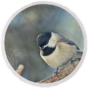 Chickadee With Texture Round Beach Towel