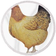 Chicken Round Beach Towel by Ele Grafton
