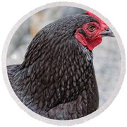 Chicken Profile Round Beach Towel by Denyse Duhaime