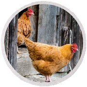 Chickens At The Barn Round Beach Towel