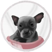 Chihauhau In A Bowl Round Beach Towel