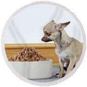 Chihuahua With Food Round Beach Towel