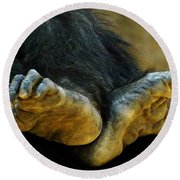 Chimpanzee Feet Round Beach Towel
