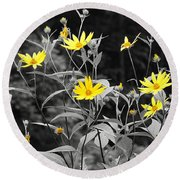 Chokeweeds Sc Round Beach Towel by Mary Carol Story
