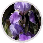Chris' Garden - Iris 4 Round Beach Towel by Stuart Turnbull