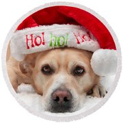 Round Beach Towel featuring the photograph Christmas Dog by Aaron Berg