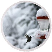 Christmas Hummingbird Round Beach Towel