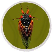 Cicada In Green Round Beach Towel