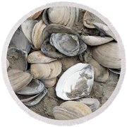 Round Beach Towel featuring the photograph Clam Shell Beach  by Denise Pohl