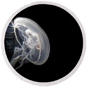 Clear Jelly Fish In Dark Water Art Prints Round Beach Towel