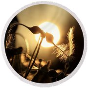 Clematis - Sunset Round Beach Towel by Kenny Glotfelty