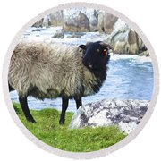 Clew Bay Sheep Round Beach Towel
