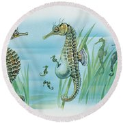 Close-up Of A Male Sea Horse Expelling Young Sea Horses Round Beach Towel