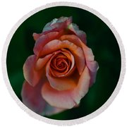 Close-up Of A Pink Rose, Beverly Hills Round Beach Towel
