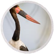 Close-up Of A Saddle Billed Stork Round Beach Towel by Panoramic Images
