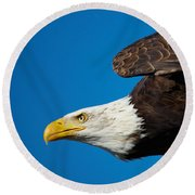 Close-up Of An American Bald Eagle In Flight Round Beach Towel