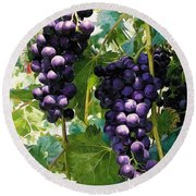 Clusters Of Red Wine Grapes Hanging On The Vine Round Beach Towel
