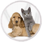 Cocker Spaniel And Chartreux Round Beach Towel