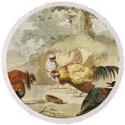 Cocks Fighting Round Beach Towel by Melchior de Hondecoeter