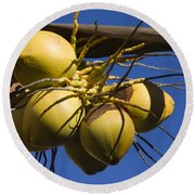 Round Beach Towel featuring the photograph Coconut 1 by Teresa Zieba