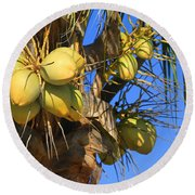 Round Beach Towel featuring the photograph Coconut 2 by Teresa Zieba