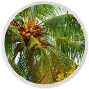 Coconut Palm In Tropical Garden Round Beach Towel