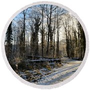 Round Beach Towel featuring the photograph Cold Morning by Felicia Tica