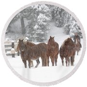 Cold Ponnies Round Beach Towel by Diane Bohna